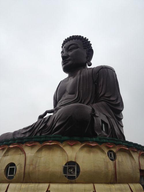 八卦山 big buddha buddha the buddha