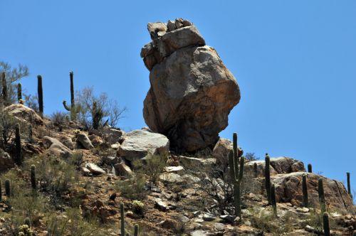 Saguaro, kaktusas, kaktusai, dykuma & nbsp, gėlė, Arizona, nacionalinis & nbsp, paminklas, nacionalinis & nbsp, parkas, gamta, lauke, kalnas, augalas, Rokas, balansas, uolingas, didelis roko balansas