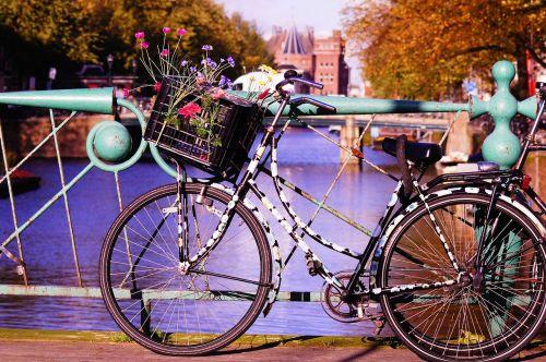 dviratis,gėlės,judėjimas,laisvalaikis,menas,žydėti,gerovė,vairai,out,saulė,spalvinga,Nyderlandai,šventė,apdaila,Amsterdamas,holland,ruduo,tiltas,turėklai,krepšelis,senas,kanalas,dekoratyvinis,spalva,kirsti,vanduo,miesto