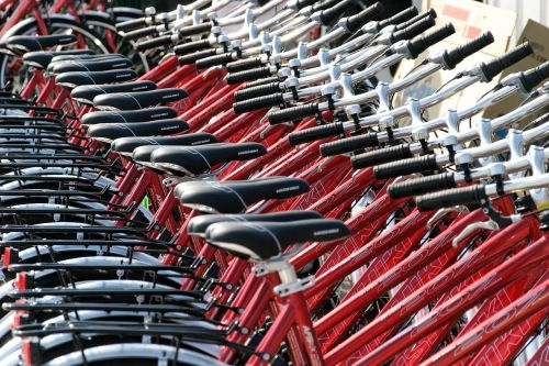 bike rental apartments for rent