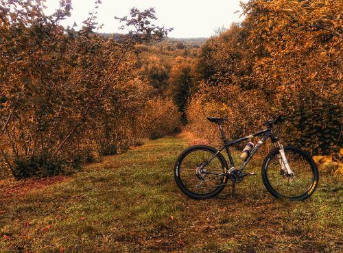 bike trail ride bicycle