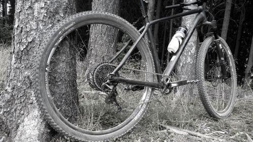 bike trek mtb