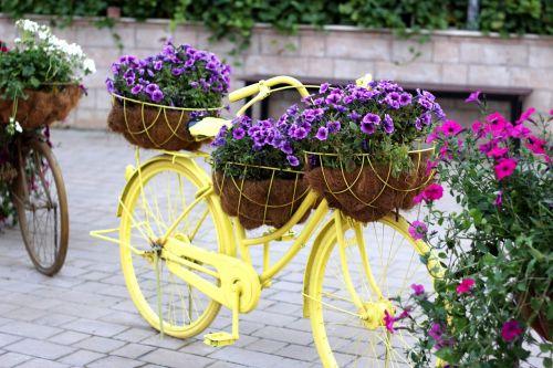bike floral bike dubai miracle garden