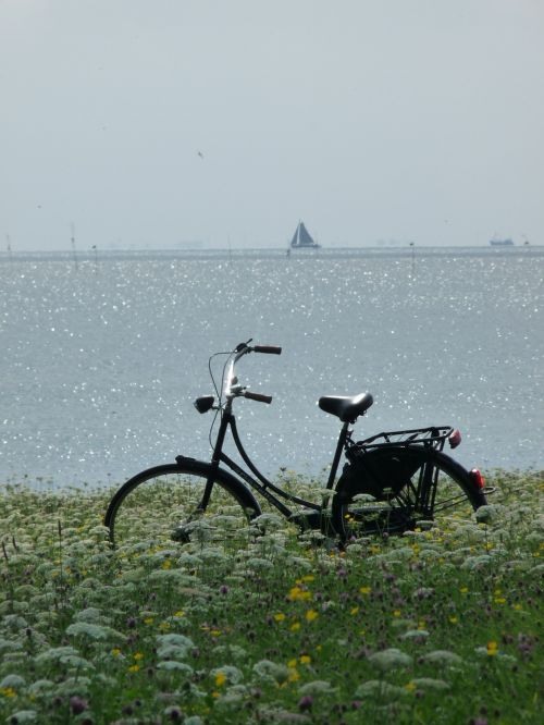 bike sea bicycle
