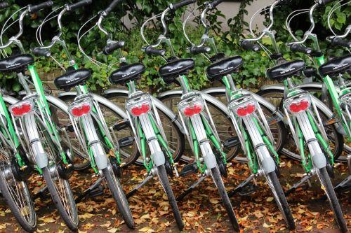 bike bicycle rental cycling