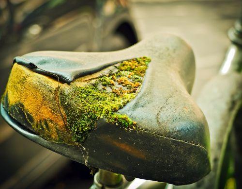 bike saddle wheel