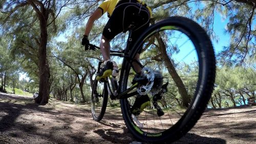 bike adventure trail
