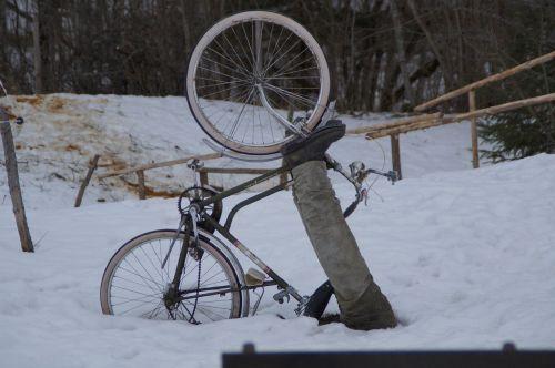 bike cyclists cycling