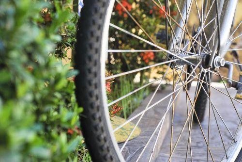 bike radius perspective