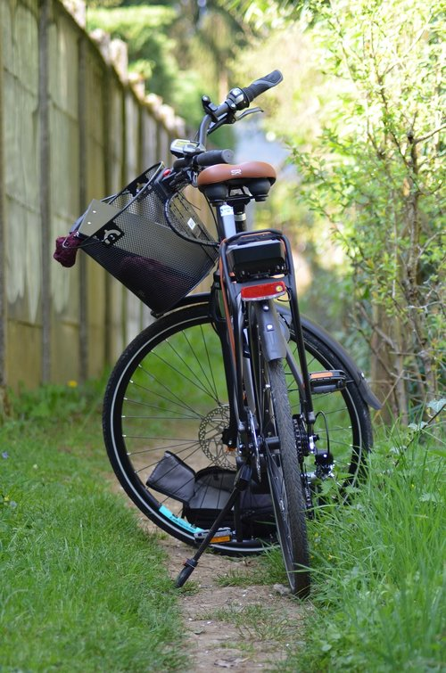 bike  trail  nature