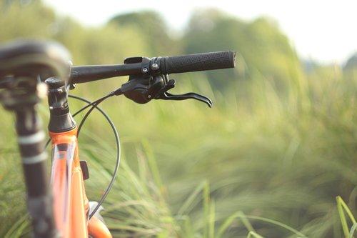 bike  forest  sports