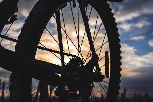 bike  mountain bike  spokes