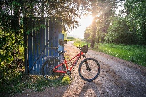 bike  summer  nature