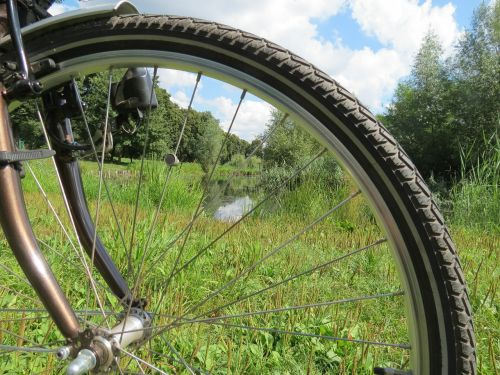 bike wheel spokes