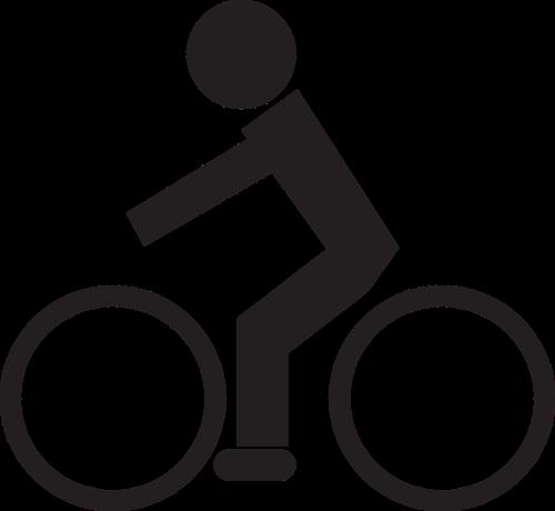 bike driver shield