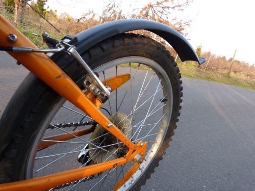bike mature wheel