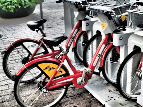 bike rental bike bicycle