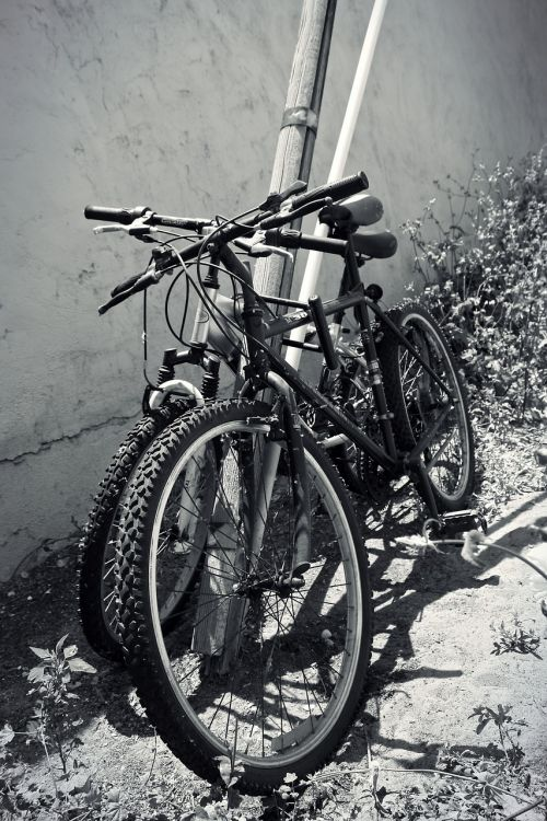 bikes pole alley