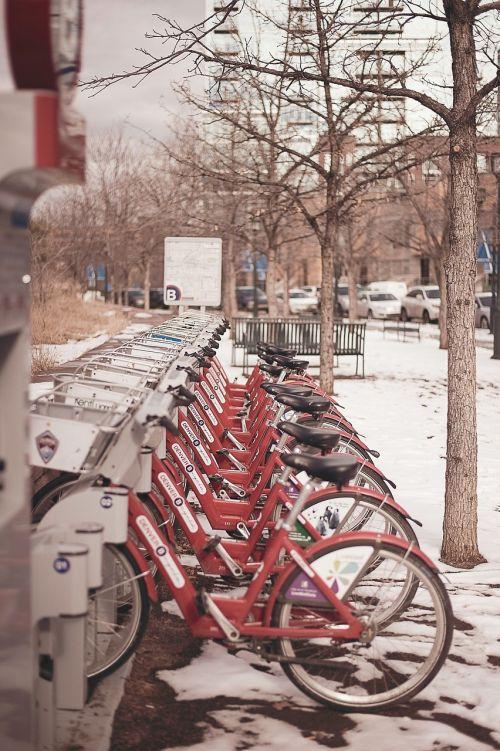 bikes bicycles denver