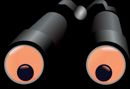 binoculars magnify see