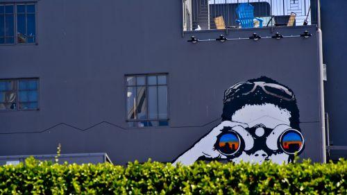 Binoculars Kid Mural