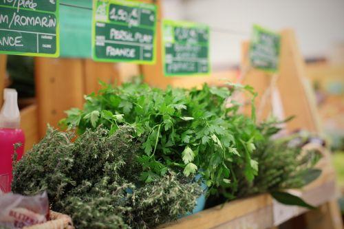 herbs bio store