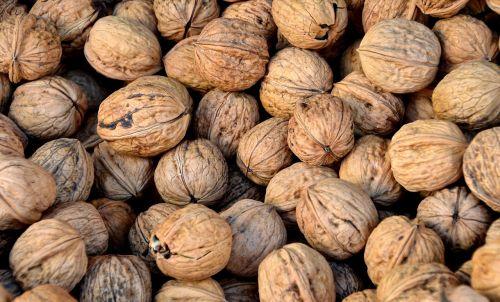 walnut nuts teaser