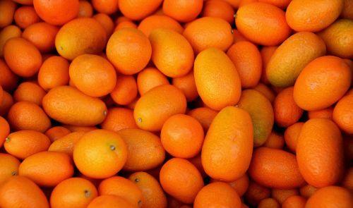 fruit orange kumquat