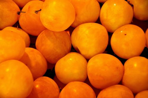 apricot mirabelle sweet
