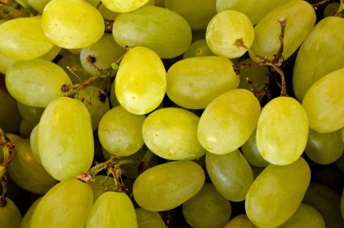 grape grapes handle sweet