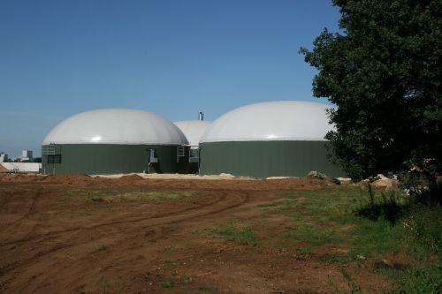 biogas manure fermentation manure