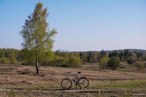 birch bike siebengebirge
