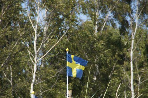 birch sweden flag