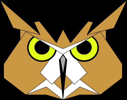bird hoot nocturnal