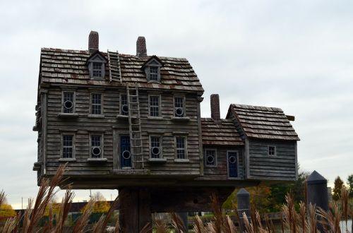 bird house structure