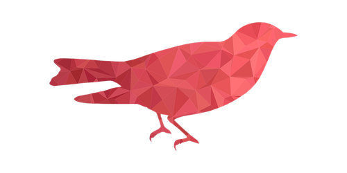 bird  3d bird  low poly