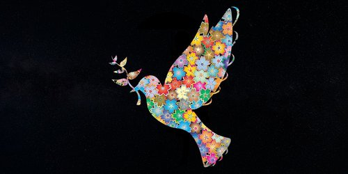 bird  peace  flower