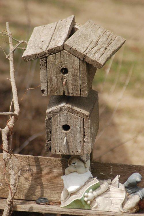 bird  bird house  rustic
