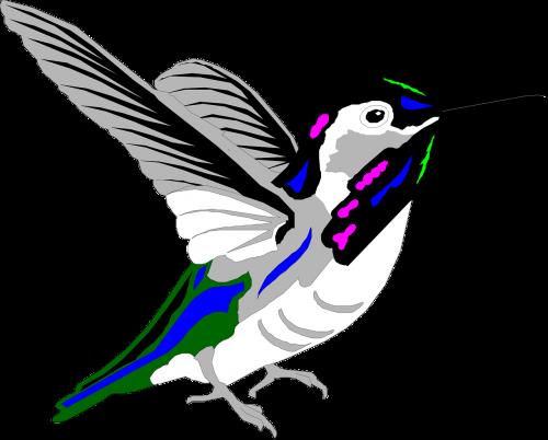 bird style wings