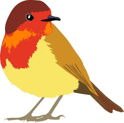 paukštis,gyvūnas,skristi,mielas,gamta,laukiniai,zoologijos sodas,Laukiniai gyvūnai,mieli gyvūnai,animacinis filmas,piešimas,meno,animaciniai gyvūnai