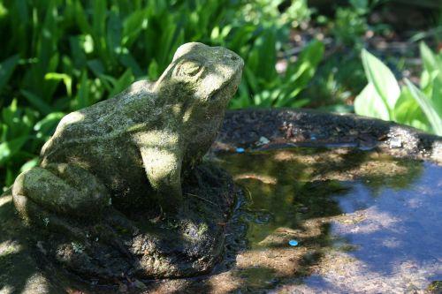 bird bath garden frog