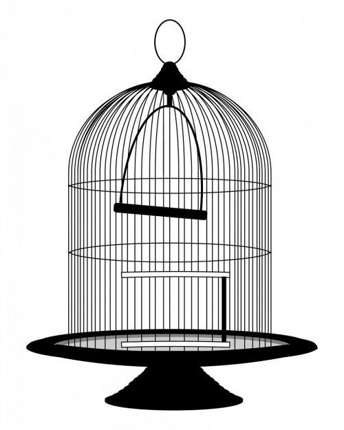 bird cage cage birdcage