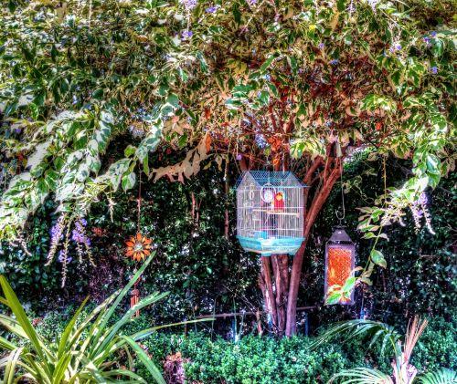 Bird Cage In The Garden