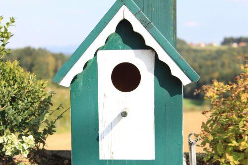 bird feeder bird aviary