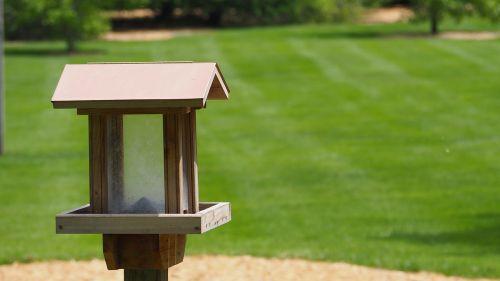 bird house bird house
