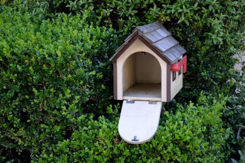 bird house garden bird