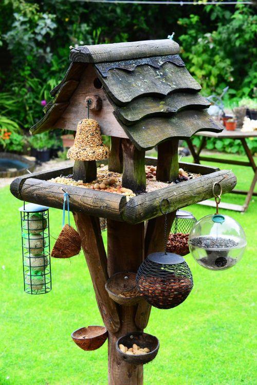 bird house bird table feeding station