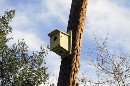 Bird House On A Pole