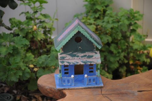Bird House On Table