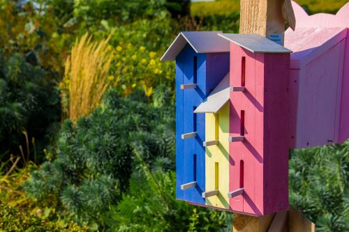 bird houses aviary nature